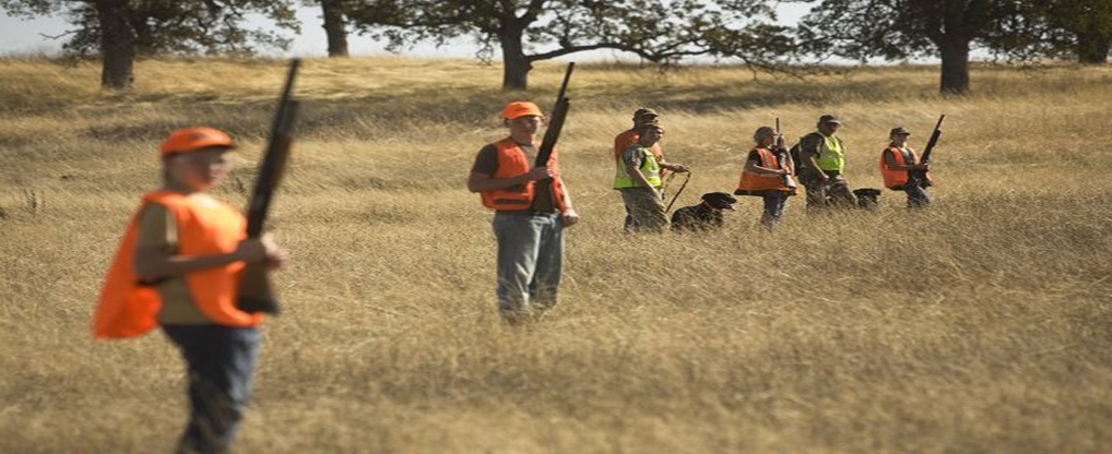 Three main points for considering land for hunting